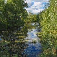 Река Колокша :: Сергей Цветков