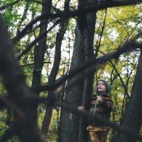 темный лес :: Анна Вязьмина-Кирилюк