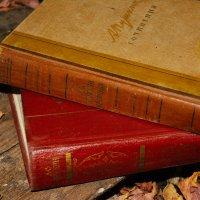 Этой осенью нас ждут стихи :: Света Кондрашова