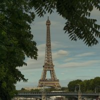 Первая леди Парижа :: Анастасия Елкина