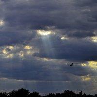 Сквозь дыры в небесах. :: Aлександр **