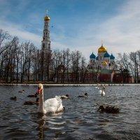 Николо-Угрешский монастырь ранней весной :: Alexander Petrukhin