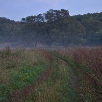 По дороге к туману :: Константин