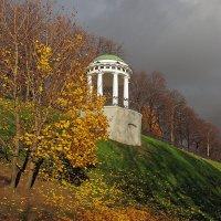 Золотая осень в Ярославле :: Николай Белавин