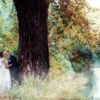 Свадебная прогулка в Красном яру :: марина алексеева