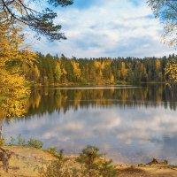 Осень на лесном озере 2 :: Виталий