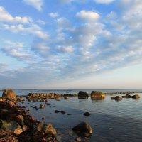 Балтика. :: LIDIA PV