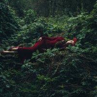 спящая принцесса :: Alice Lain