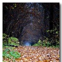Врата Осени :: Saniya Utesheva