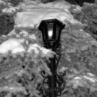 фонарь :: Юрий Борзов