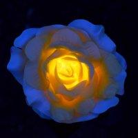 Роза садовая, пластиковая - 2 :: gegMapuXyaH