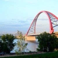 Бугринский мост. Новосибирск - 2. :: gegMapuXyaH