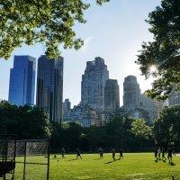 Central Park New York :: Павел L