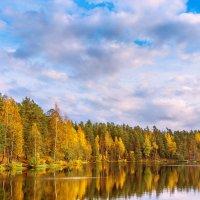 Осень на лесном озере 5 :: Виталий