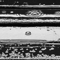 Абстракция дождя :: shvlad