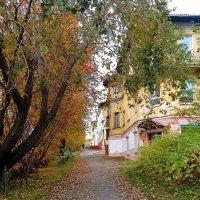 Осень... как ты хороша! :: Анна Приходько