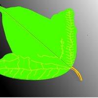 лист калины :: Лебедев Виктгр