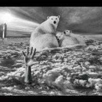 Холод :: сергей адольфович