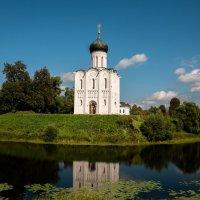 Храм Покрова-на-Нерли :: Светлана .