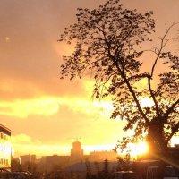 после дождя :: WINDKOS Ситников