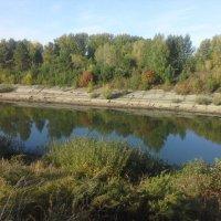 Канал-осень... :: Роман Геннадьевич