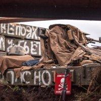 пулеметное гнездо. южный фронт :: Олег Никитин