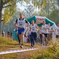 Осенние старты :: Олег Карташов