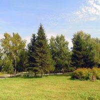 Осень вступила в свои права. :: Мила Бовкун