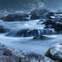 вода :: Любовь Нефёдова