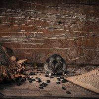 Совесть - как хомяк. Или спит или грызет.. :: Роман Шафовал