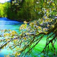 голубое озеро :: Таня
