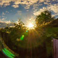 Заглянуло солнышко во дворик! :: Ирина Антоновна