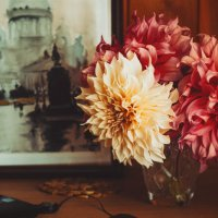 autumn flowers :: Larissa
