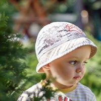 Портрет мальчика :: Андрей Медведев
