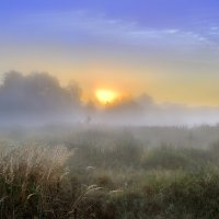 Рассветные волны... :: Андрей Войцехов