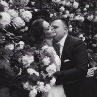 Свадьба Любы и Саши :: Ольга Коблова