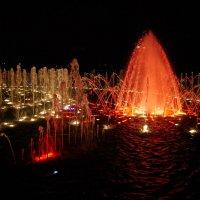Цветные фонтаны в Царицыно. :: Зоя Азимут