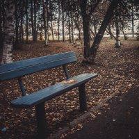 Лавочка в парке.. :: Ирина Антоновна