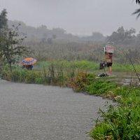 На рыбалке в дождь :: Владимир