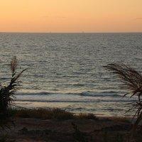 Вечер на Средиземном :: Лев Аронс