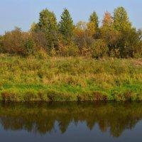 Осень золотая :: Вера Андреева