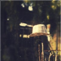 Шляпа :: Вера Арасланова