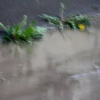 Дождливые  акварели.... :: Валерия  Полещикова