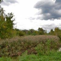 Природа в сентябре. :: Oleg4618 Шутченко