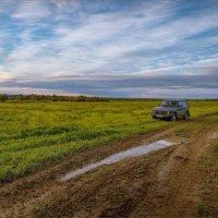 URBAN в поле... :: Александр Никитинский