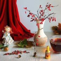 Осенний с барбарисом :: Павлова Татьяна Павлова