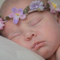 Новорожденные сны. :: Юлия Масликова