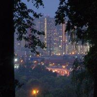 Сумерки в мегаполисе :: Saniya Utesheva