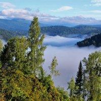 Над рекой туман :: Сергей Чиняев