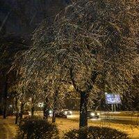 После ледяного дождя. :: Владимир Безбородов